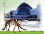 Tianjin Natural History Museum on stap of China 2002