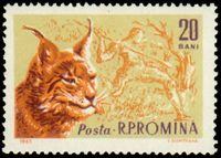 Prehistoric hunter on stamp of Romania 1961