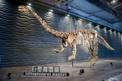 fossil of Lufengosaurus magnus in Hong Kong's museum of science