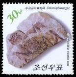 Ditomopharangia fossil on stamp of North Korea 2013