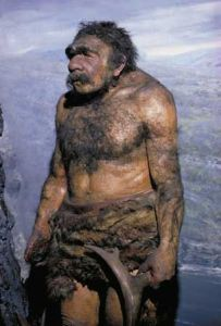 Neanderthal of Chicago's Field Museum diorama