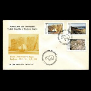 FDC of cyprus_north_1991_fdc
