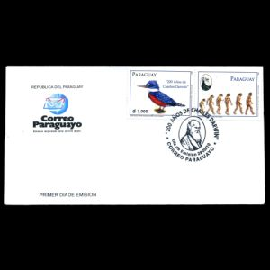 FDC of paraguay_2010_fdc