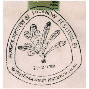 Fossil of prehistoric plant on commemorative postmark of India 1981