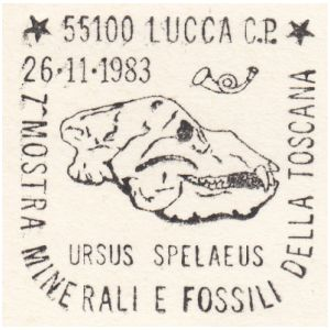 Cave bear, ursus spelaeus on postmark of Italy 1983