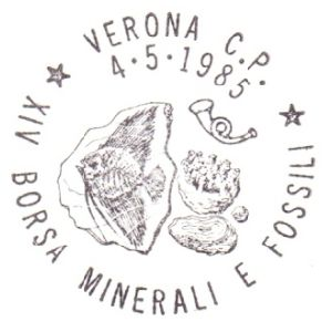 Fish fossil on postmark of Italy 1985