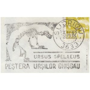 Fossil of cave bear, Ursus Spelaeus, on commemorative postmarks of Romania 1982