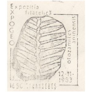 Plant fossil of Otozamites aninensis on commemorative postmarks of Romania 1983