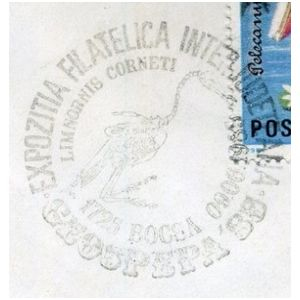 Fossil of pterosaur Limnornis corneti on commemorative postmarks of Romania 1985