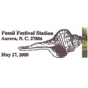Fossilized shell on postmark of USA 2000