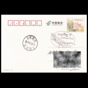 china_2017_pm17_used cover