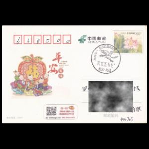 china_2017_pm29_used cover
