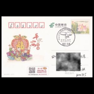 china_2017_pm30_used cover