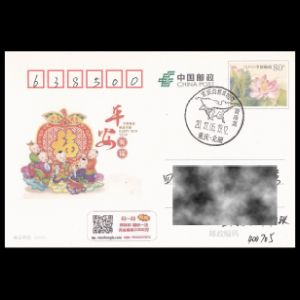 china_2017_pm31_used cover