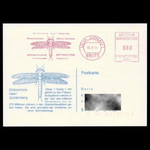 germany_1994_mf_used cover