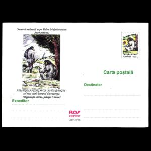AUSTRALANTHROPUS OLTENIESIS on postal stationery of Romania 1999