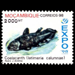 Coelacanth,  Latimeria chalumnae on stamp of Mozambique 1998