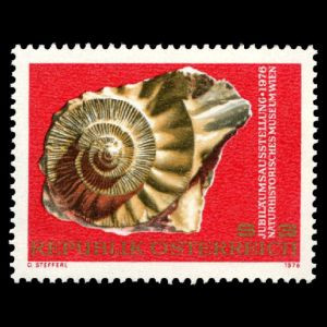 Ammonite on Vienna Natural History Museum Centennial stamp of Austria 1976
