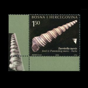fossil shell Turritella turris from city of Tuzla on stamps of Bosnia and Herzegovina 2008