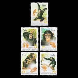 extinct Proconsul primate on Evolution of the Chimpanzee stamps of Cuba 1998