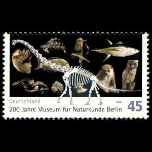 zoology, paleontology, dinosaur, Brachiosaurus brancai on stamp of Germany 2010