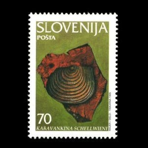 shell fossil of Karavankina schellwieni on stamp of Slovenia 1995