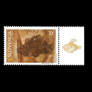 Fish fossil on stamp of Slovenia 2004