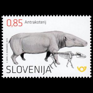 Anthracotherium Magnumon stamp of Slovenia 2019