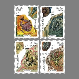 Fossils on stamps of Somalia