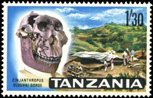 Zinjanthropus skull at Olduvai Gorge on stamp of Tanzania