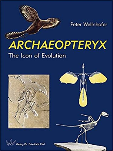 Archaeopteryx the icon of evolution