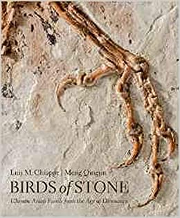 Birds of Stone: Chinese Avian Fossils from the Age of Dinosaurs