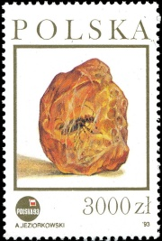Insect in amber on stamp of Poland 1993