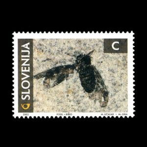 Insect on fossil stamp of Slovenia 2002, Click for details